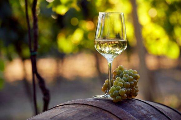 Vente de vins blancs pour restaurateurs et professionnels