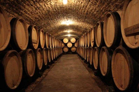 Entreprise professionnelle pour la vente de vin par professionnel