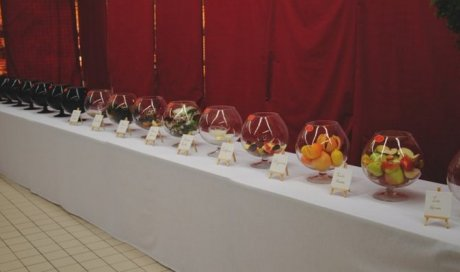 Animation vin globes olfactifs Lyon