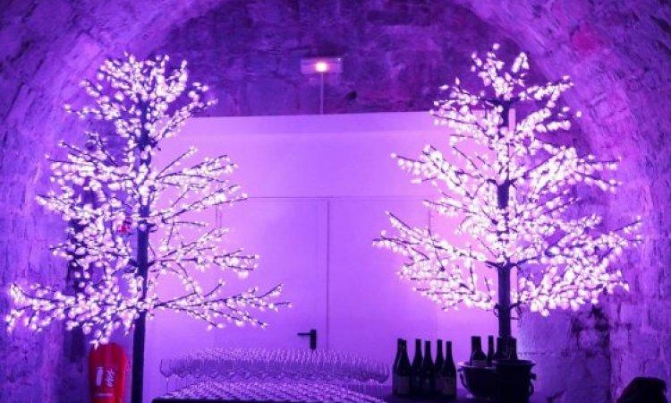 Entreprise d'animation d'œnologie de vin Lyon